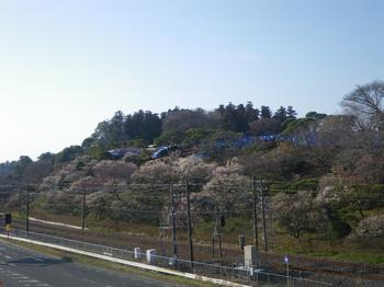 Mito3.JPG